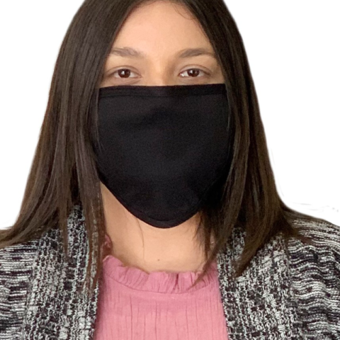 Triple Layer Masks Profile Fresno